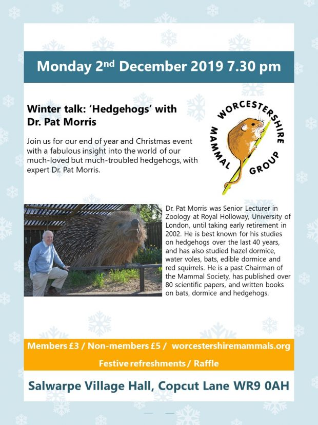 'Hedgehogs' with Pat Morris + Christmas Raffle