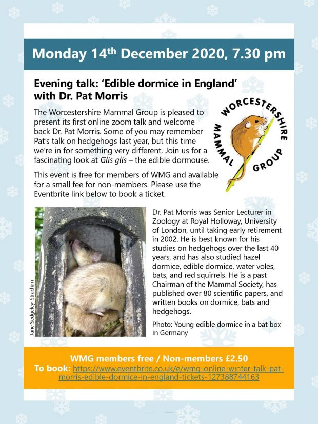 Evening Talk: 'Edible dormice in England' with Dr. Pat Morris
